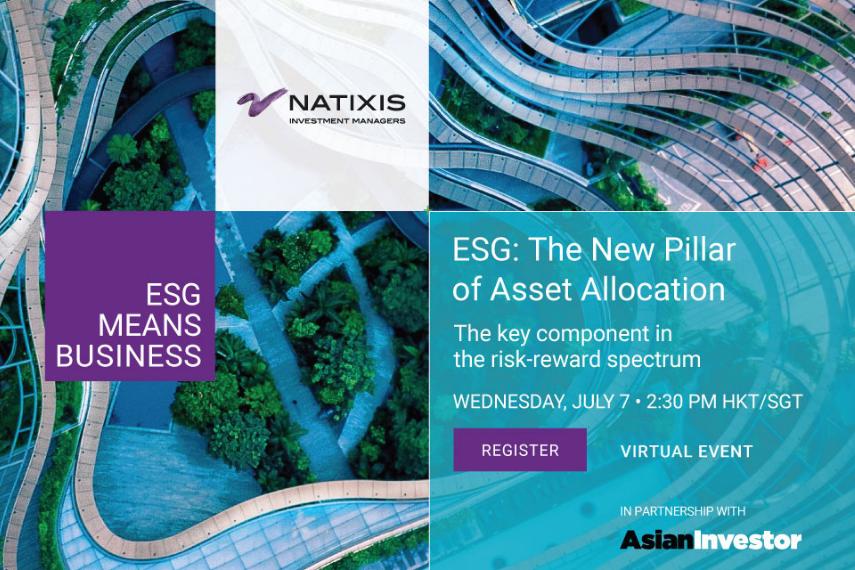 ESG: the New Pillar of Asset Allocation