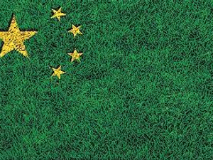 Party Congress pushes Green finance