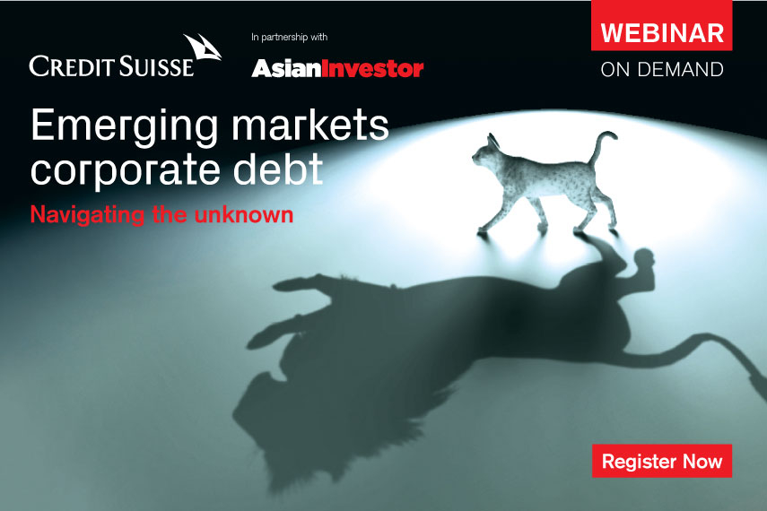 Emerging Markets Corporate Debt - Navigating the Unknown