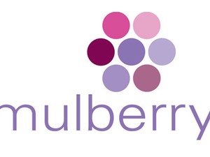 Mulberry acquires Singapore's Red Dawn Communications
