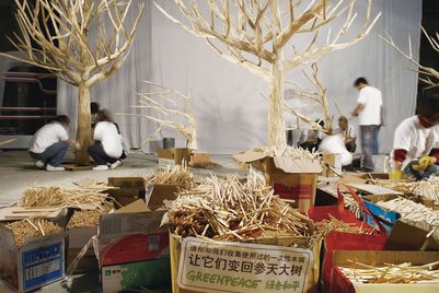 'Disposable forest' calls attention to sustainable development