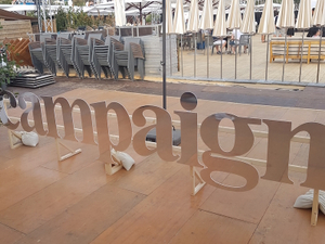 Direct from Cannes: Reporter's notebook from the festival