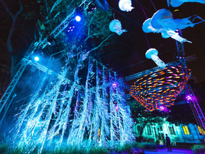 Case study: Singapore Night Festival
