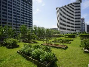 Grand Hyatt Singapore ups its green game