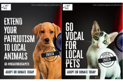 World For All targets discrimination against local pets