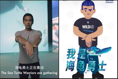 Actor Eddie Peng recruits sea turtle warriors in China
