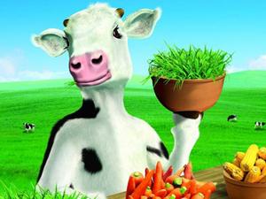 GroupM bags $50 million Yili Dairy business