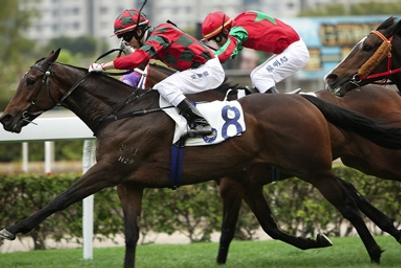 Hong Kong Jockey Club seeks digital rebrand