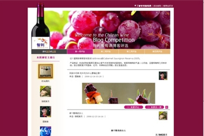 CASE STUDY: Promoting Chilean wine in China