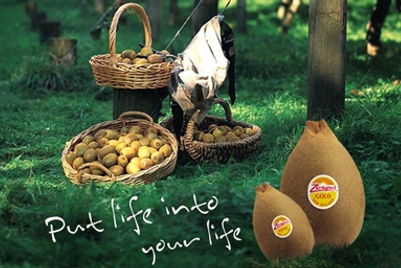 Zespri International picks DDB Korea for creative and media in Korea