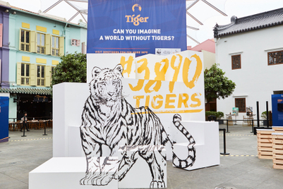Tiger Beer sinks teeth into big-cat conservation