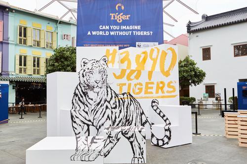 Tiger Beer sinks teeth into big-cat conservation