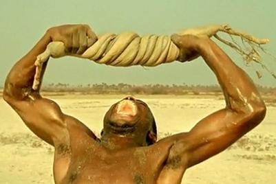 LMN | Lost Bushmen | India