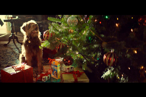 Pedigree declares festive 'Season of Good Dog' is here