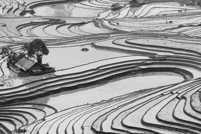 Vietnam catching up on itself