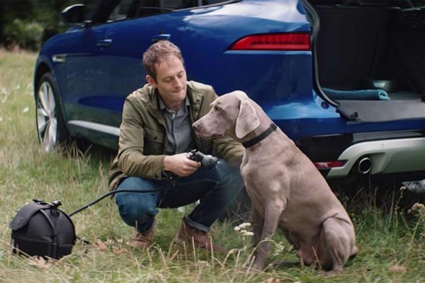 Jaguar Land Rover: working on creating 'more efficient business model'
