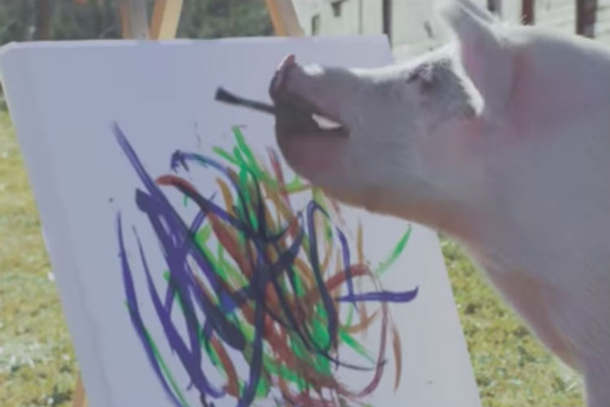 'Pigcasso' creates something very special for the Skyline's 60th anniversary.