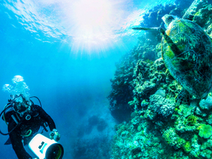 Qantas takes passengers on virtual reality dive into the Great Barrier Reef