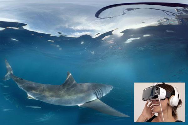 Samsung takes desert dwellers on a virtual shark dive