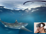 Samsung takes desert dwellers on a virtual shark dive
