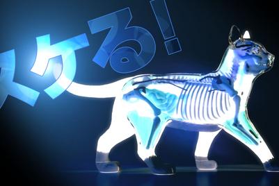 Dentsu wants brands to display their 'skeletons'