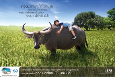 Tourism Authority of Thailand motivates domestic travel through 'Hug Thailand' campaign
