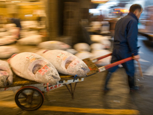 As Tokyo's iconic Tsukiji market closes, will the brand endure?
