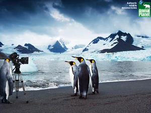 BBC Worldwide sells Animal Planet stake to Discovery for US$156m