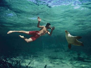 Tourism Australia relaunches 'Best job in the world'