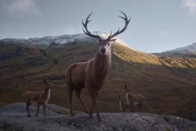 Glenfiddich asks 'where next' with story of stag in global campaign