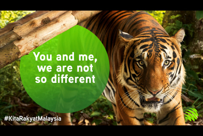 Maxis project highlights plight of 'endangered Malaysians'