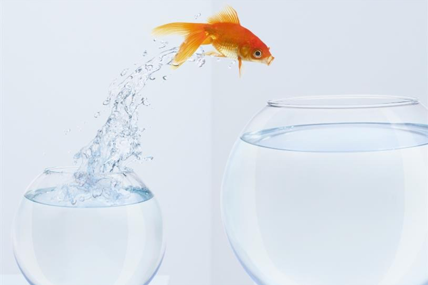 Why marketers have to think small to win big