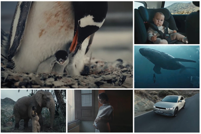 Expectant humans and animals get a say in Hyundai film