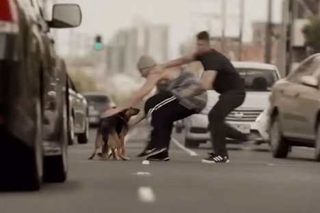 Aussie TVC leads off global Pedigree campaign exploring the power of dogs