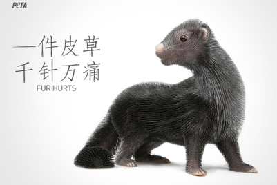 PETA launches pointed attack on China's fur trade with creative art installation