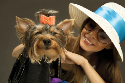 Pet care: Doting owners splash out to show love