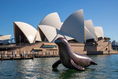 Sydney Opera House unveils promotional pinniped