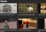 Rightster launches VideoSpring to search and license viral vids