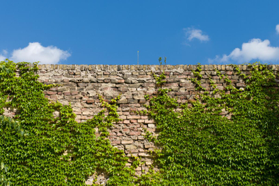 Back to basics: Saving digital marketing in the era of walled gardens