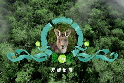 蚂蚁森林五周年 dentsu mcgarrybowen 请动物们友情出演绿色生活方式
