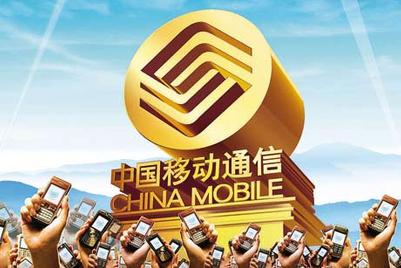 中国十大数字品牌报告
