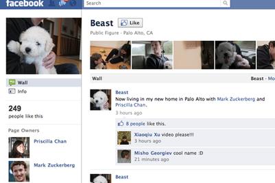 艾曼高报告称Facebook越来越受到香港营销商的青睐