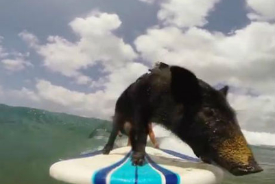 MMGB: GoPro films Kama's surfing adventures