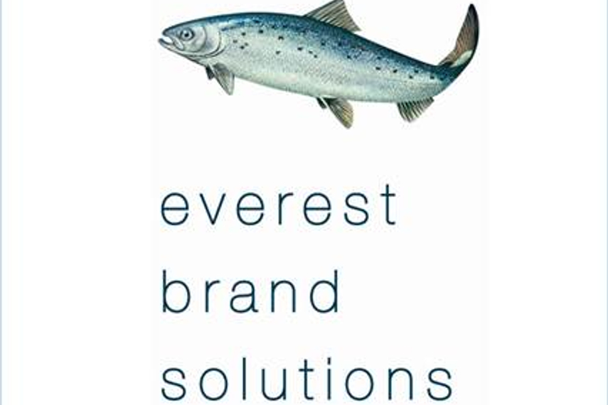 Everest bags creative mandate of Onida ACs