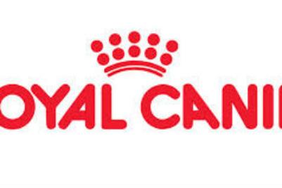Rapp India bags Royal Canin's digital mandate