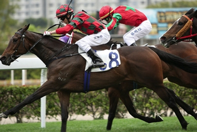 香港赛马会正寻找机构为革新其数码品牌