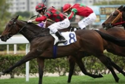 香港赛马会为其推广项目制定数码代理筛选名单