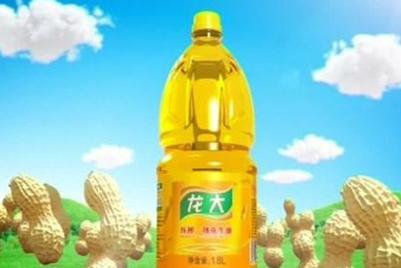 广州电通东派赢得龙大花生油业务