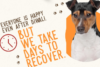 Turn on the woofer this Diwali