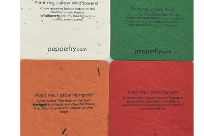 Pick of the Week: Pepperfry's plant-able coasters
